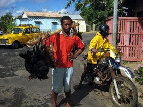 Chicken selling